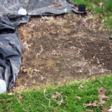 Plastic sheeting pulled up to show bare earth underneath.