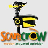 The Scarecrow, a motion-activated sprinkler