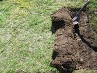 A shovel digging up sod.