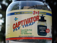 """Captivator"" brand fly trap."
