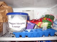 "The inside of a freezer with a tupperware container that is labeled ""maggot sleeping lounge"""