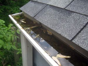 A photo of a clogged gutter.