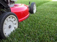 A lawnmower cutting grass.