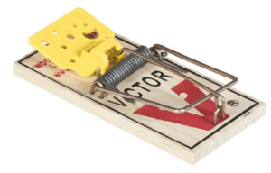 snap trap for mice
